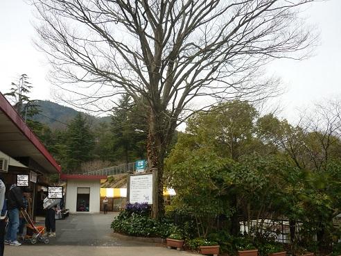 1-zoo (3).JPG