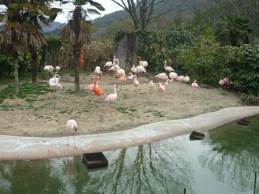 3-zoo (2).JPG