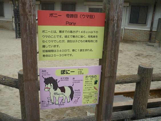 7-zoo (3).JPG