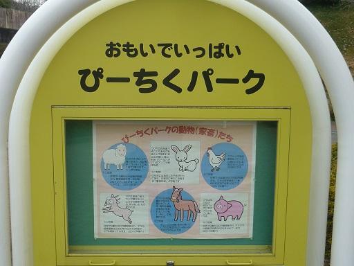 7-zoo (4).JPG