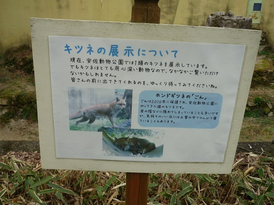 7-zoo (5).JPG